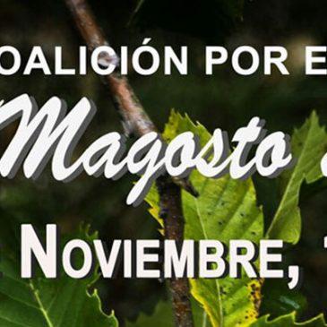 Coalición por El Bierzo celebra el domingo 20 de Noviembre en Priaranza la segunda edición de su magosto popular